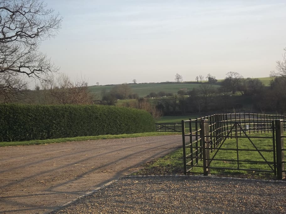 One of the views from the farm! This is the view from your door.