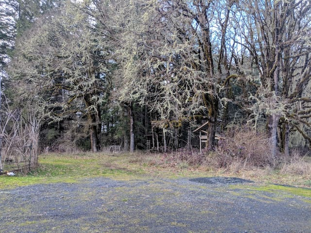 RV Site on 87 acres - 20 min from Eugene