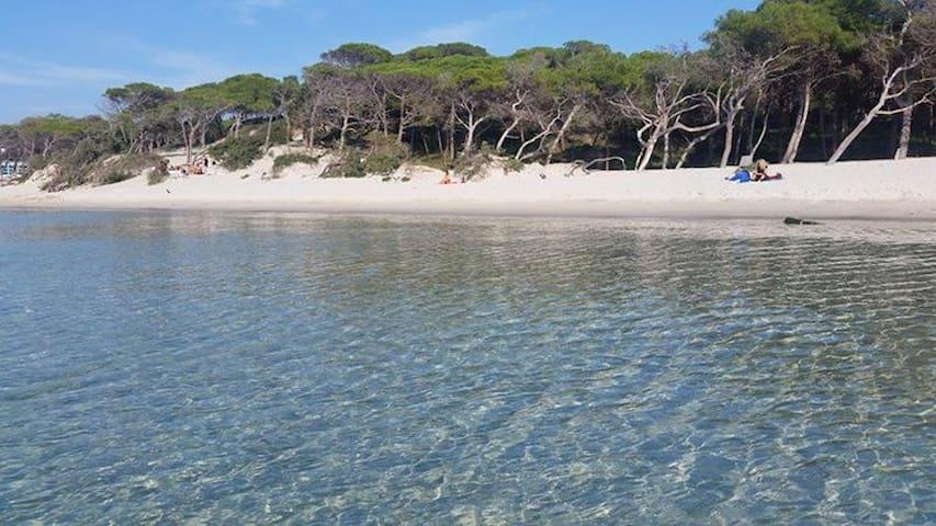 Spiaggia Maria Pia a 4 km dall'appartamento