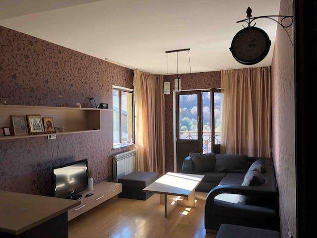 Elene's apartaments