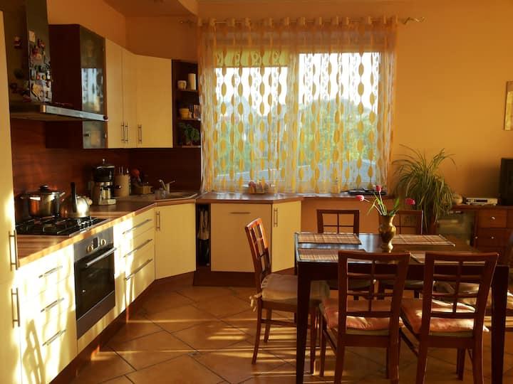 Cozy 2 bedr apartment by lake Trakai near Vilnius