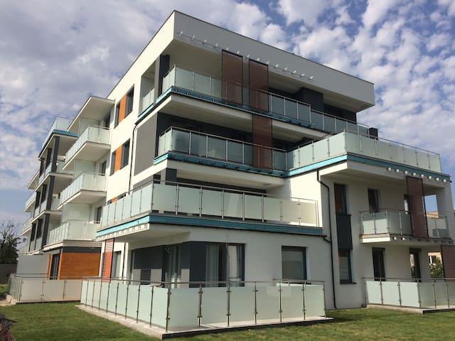 Apartament Lux Golebia 66