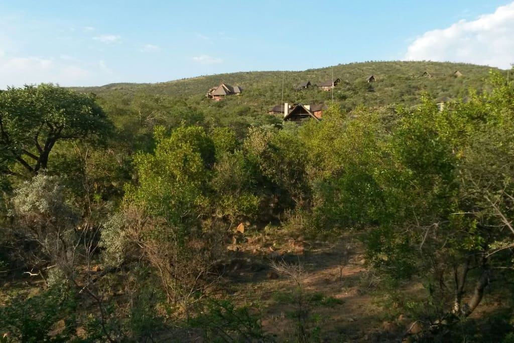 View of house in the Mabalingwe bush.