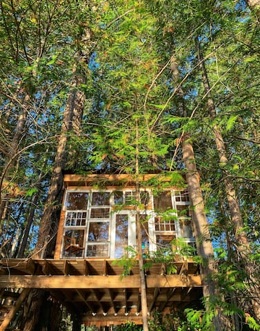 Out There Off Grid Private Island - Tree House