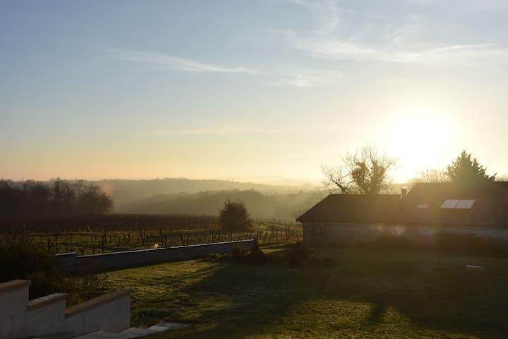 Joli appartement au calme des vignes du Bordelais - Sainte-Croix-du-Mont - Byt