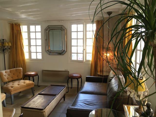 Amazing Location next to Notre Dame de Paris! - Paris - Apartamento