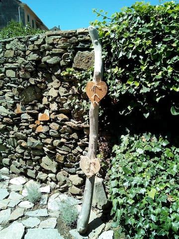 Vue d'un des murs du jardin en pierres, typique du Cap Corse.