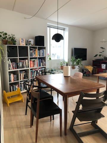 Large apartment for families