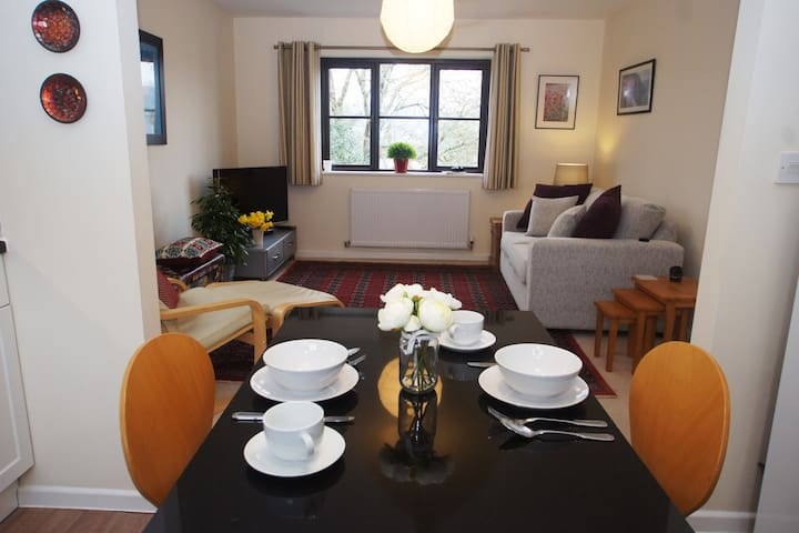 The Hide, Luxury apartment, Dartmoor National Pk - Moretonhampstead - Daire