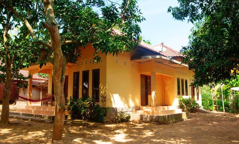 Casa Mango - Pujut - House