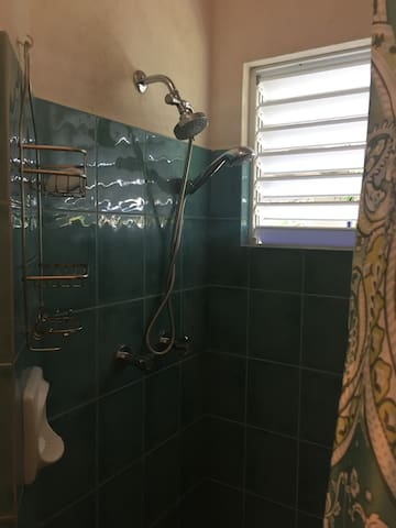 Directional and fixed shower