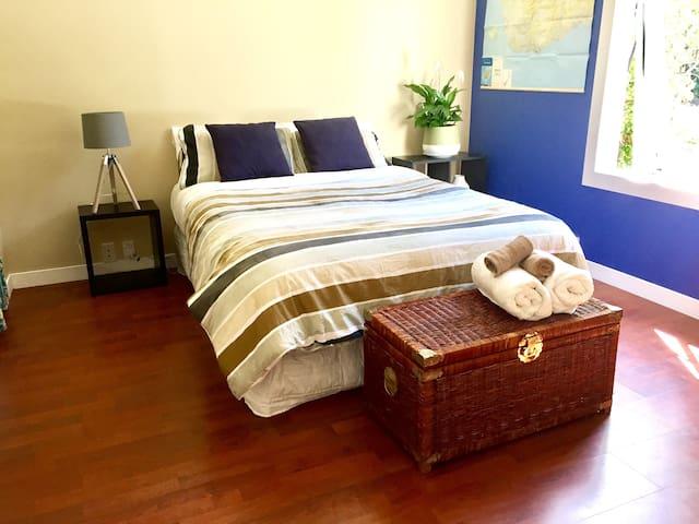 Modern, warm, close to Uni & CBD - Dunedin - Huis