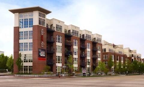 Modern Downtown Condo December 15 - March 15