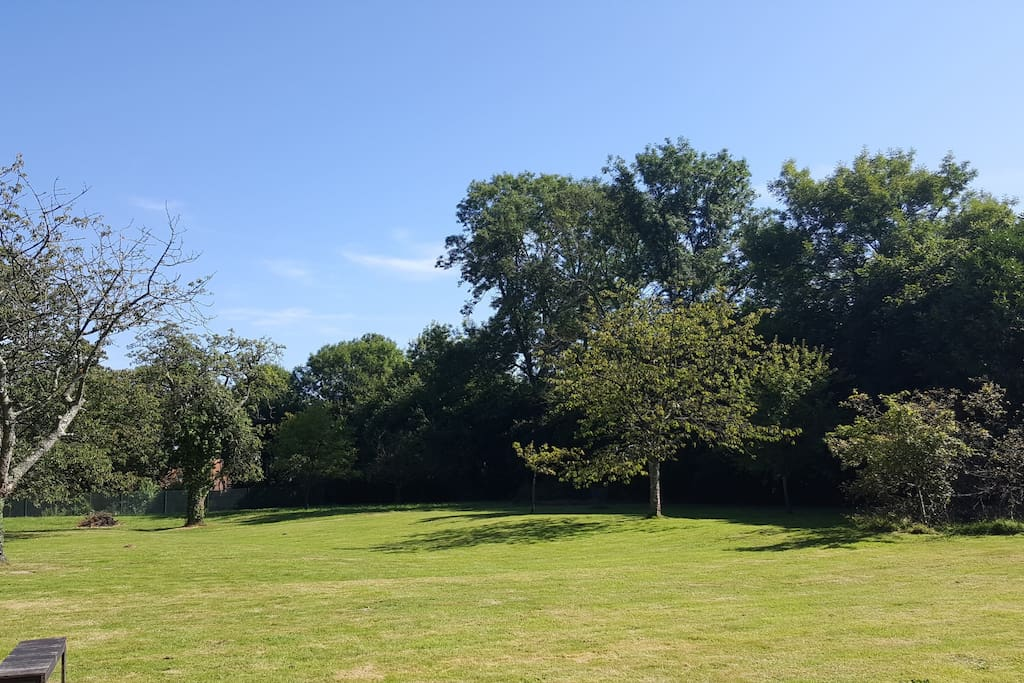 Jardin (pommiers, cerisiers, reine-claude...) avec terrain de tennis au bout du jardin