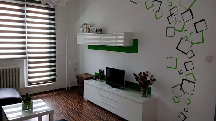 Útulný byt nedaleko centra /Cozy flat near centre
