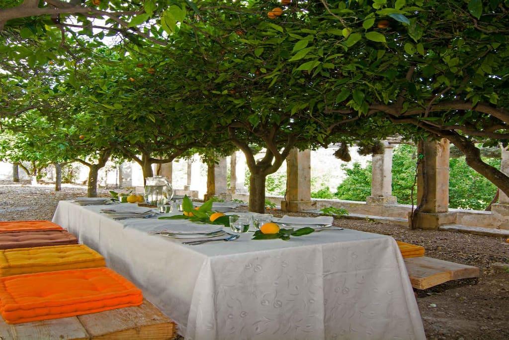 Schöne Atmosphäre am Esstisch im Orangenbaumgarten
