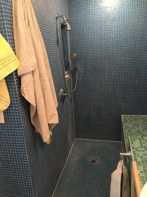 Walk in totally handicapped accessible shower with hand shower and large bench for sitting