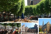 Haarlem is famous as Best Shopping city, but also worth while to wander around its narrow streets, alleyways and hidden courtyards and lots of lovely unexpected squares with cozy (heated) terraces, good eateries and delicious food