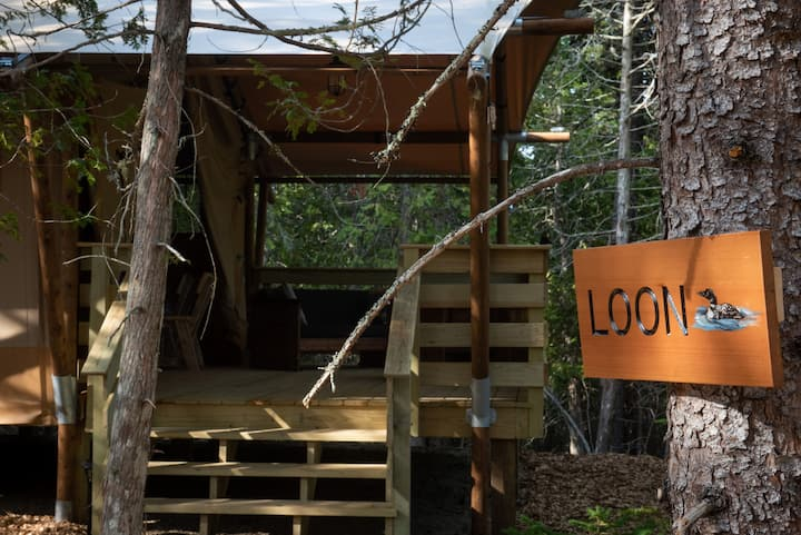 Loon Tent, Woods of Eden Glampground, Acadia.