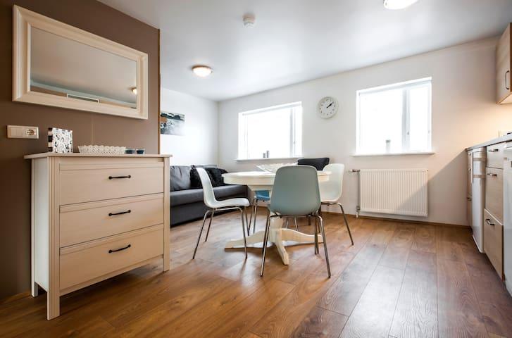 2 bedroom apartment, Downtown Charm Reykjavík