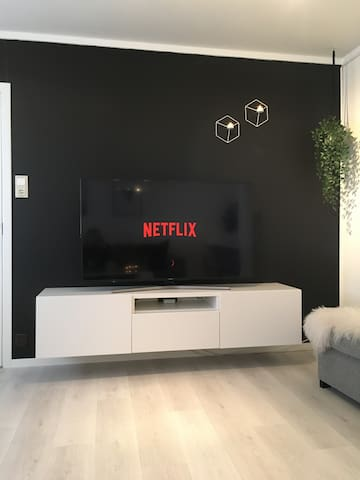 On the tv you will have access to different channels and netflix