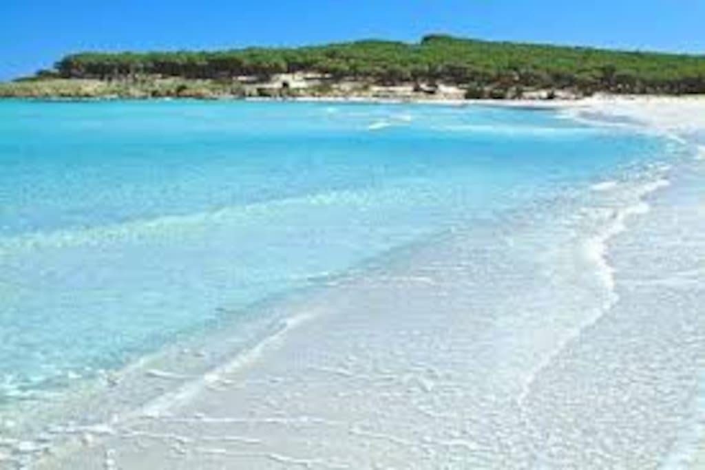 spiaggia budoni-tanaunella