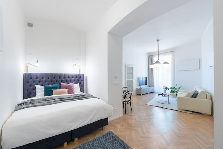 Nice, stylish and spacious studio provided for your great stay in Prague:)) Feel free to ask us any questions, we'll gladly help you.