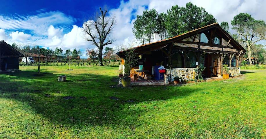 La maison de Lili - Onesse-Laharie - Huis