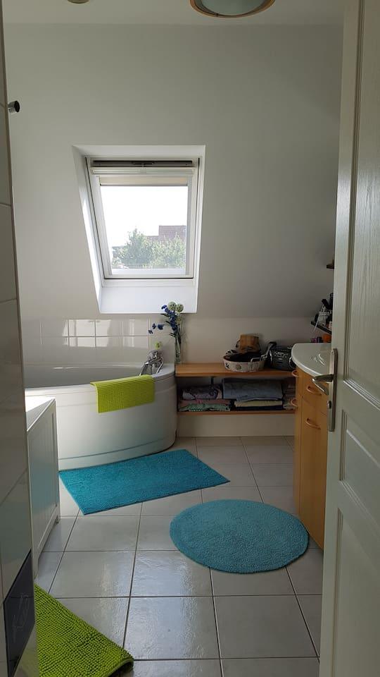 salle de bain partagée avec baignoire et douche