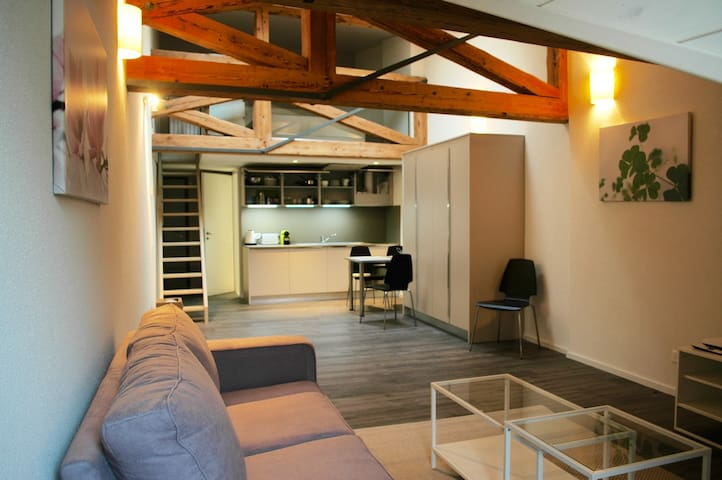 Dreamy 55m2 mezz in Morges centre - Morges - 公寓