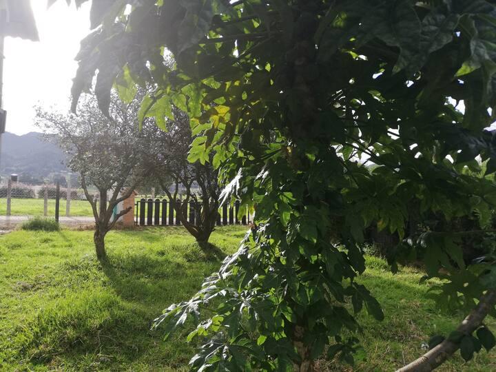 Valle del Sol. Casa Campestre. Tabio. Peña Juaica.