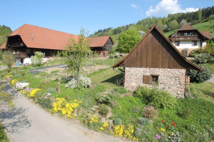Ferienhof Göppert - Moosblick