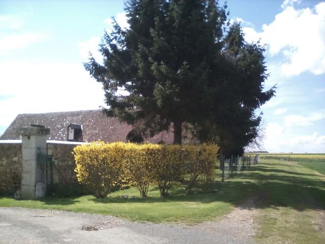 Gite LES CHAMPS PICARD - Châtillon-en-Dunois - House