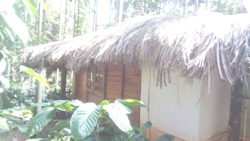 Log Hut - A cozy Home Stay in Chickmagaluru