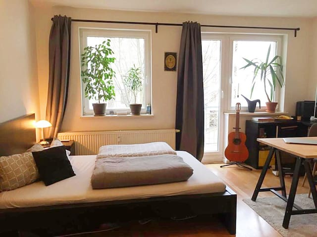 Schöne 1-Raum Wohnung in Park- und Innenstadtnähe
