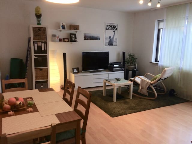 Cozy Apartment for 2 Person with an amazing view - Karlsruhe - Apartment