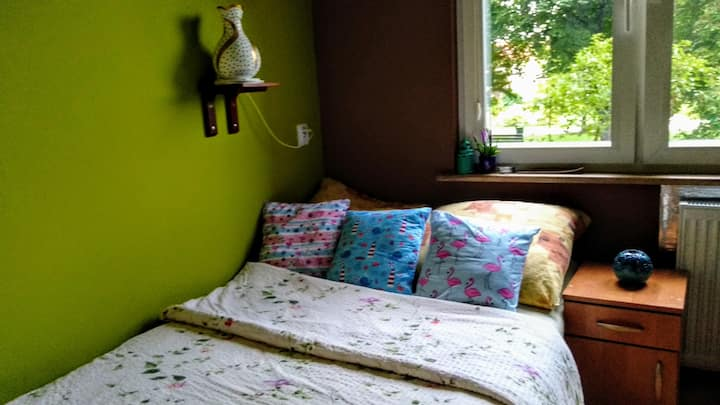 Comfy room 20 min by steps from Tauron Arena! :)