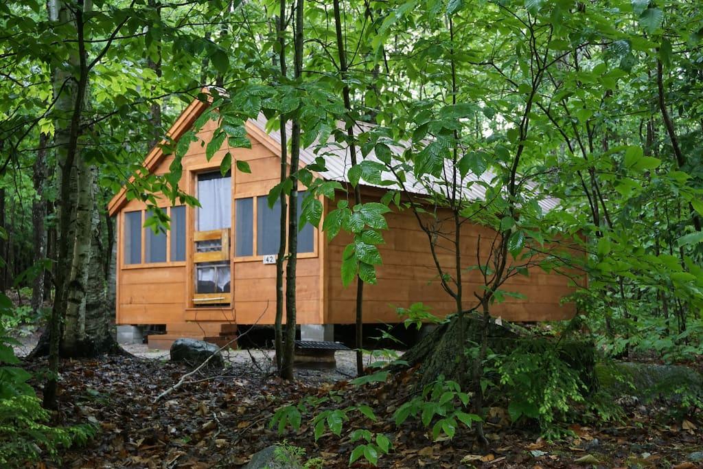 Deluxe Cabin #42, sleeps 8-10 $45 minimum, $22 each additional adult,
