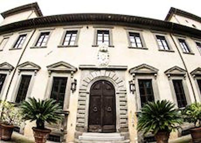 Bellissimo mezzanino inserito in  Villa storica - Metato - Wohnung