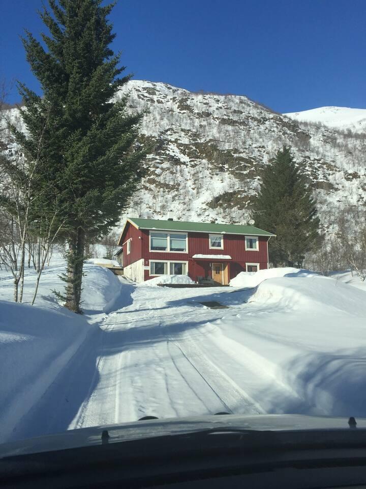 Leilighet i Lofoten