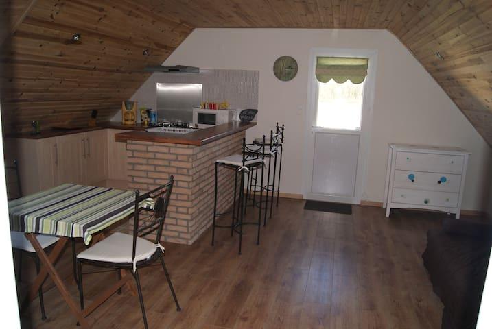 Quiet studio in Ploemel in southern Brittany - Ploemel - Daire