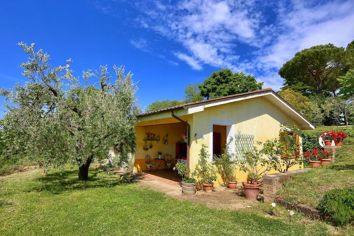 Modern Cottage in Graffignano Italy with Swimming Pool