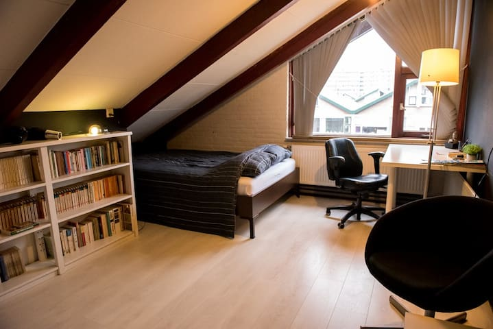 Attic with loungeroom and bedroom near city centre