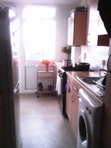 large double room near central London only female