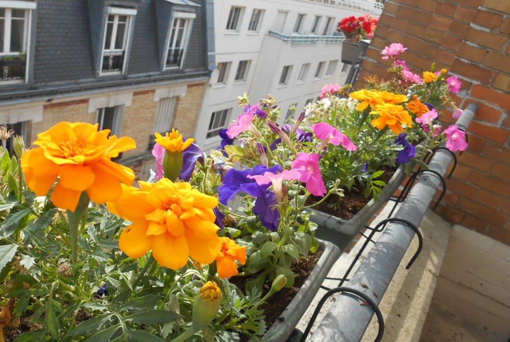 Flowers on your bedroom's balcony!