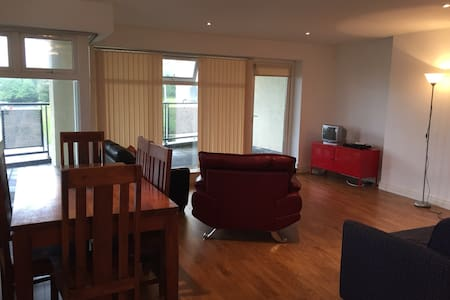 Bright and clean spacious apartment. - Galway
