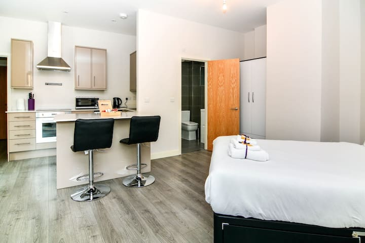 Modern Studio Apartment Canary Wharf