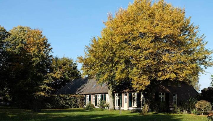 Historische langgevel boerderij in Borkel & Schaft