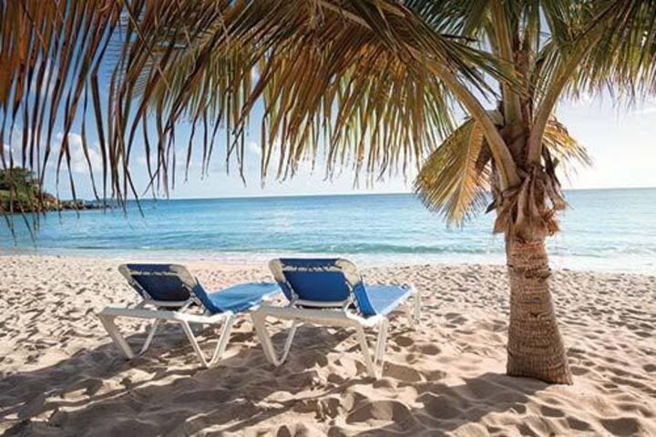 Bluebeards Beach Club St Thomas