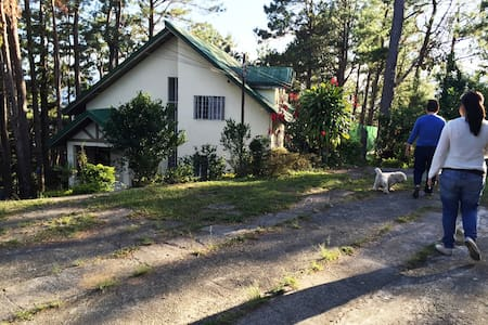 Family Cottage Under the Pine Trees. 5,900-12 pax